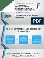 Exposicion_AgentesXenobioticos_Biorremediacion