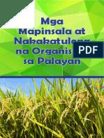 Rice Booklet - Mga Mapinsala at Nakakatulong Na Organismo Sa Palayan