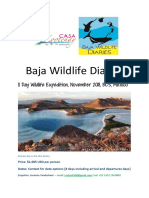 BWD Wildlife Expedition November 2018 LEEANNE