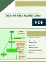 Curso-2-Resumo-NRS