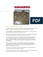 Beneficios y Propiedades de La Altamisa (2)