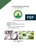 monografia de algas microbiologia.docx
