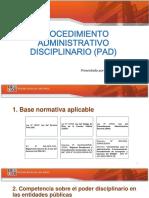 PAD-II.pdf