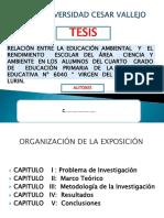 86420027 Presentacion Tesis Diapositivas