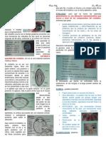CATARATA.pdf