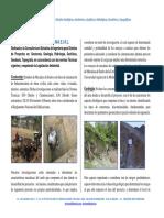 Presentacion Dk Ingenieria & Geotecnia