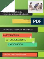 FASE DE EVALUACION Y DIAGNOSTICO DE LA ESTRUCTURA EN TERAPIA FAMILIAR