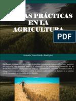 Armando Nerio Guedez Rodríguez - Buenas Prácticas en La Agricultura