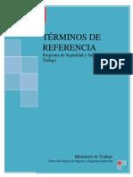 TERMINOS DE REFERENCIA PARA EL SISTEMA DE GESTION DE LA SEGURIDAD Y LA SALUD EN EL TRABAJ.pdf