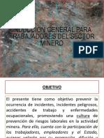 Inducción para trabajadores_minas.pptx