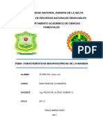 Caracteristicas macroscopicas de la madera.docx