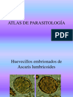 Atlas de Parasitologìa