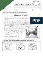COMPRENSIÓN LECTORAS VARIAS 1° BASICO LISTAS