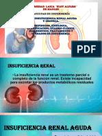 Insuficiencia Renal Expo-1511886172