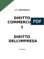 Commerciale 1 - L_ impresa