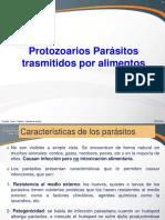 Protozooarios Parásitos 2016. Clase Teoría.ii