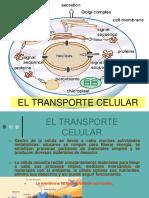 transporte cel2