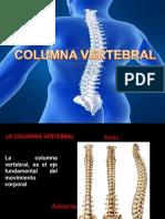 4.- Columna Vertebral, Atlas y Axis