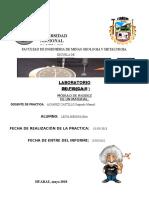 fisica II practica de laboratorio N° 1.docx