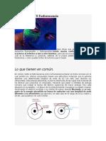 Fluorescencia vs Fosforescencia