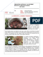 Horchata Deber1