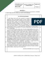 Examen Lengua Castellana y Literatura de Castilla y León (Ordinaria de 2017)