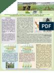 afiche_ochoa.pdf