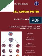 2018  SDP  S1 UNDANA.pdf