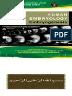 embriogenetik