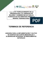 Tdr Huertos Medicinaes - Asecsa020718