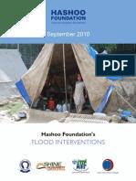 Hashoo Foundations's Flood Interventions