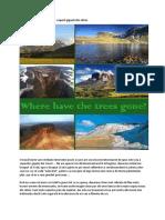 Pădurile Pierdute ale Terrei - copacii giganți din siliciu.docx