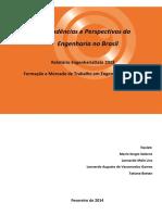 Relatorio EngenhariaData 2013 (1)