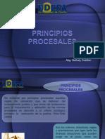 Diapositivas Sobre Los Principios Del Codigo Civil