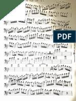 concerto pour une voix.pdf