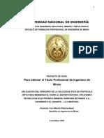 218941861-Tesis-Teoria-Pico-Particula.pdf
