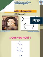 SENSACION Y PERCEPCION ING 2014-I.pptx