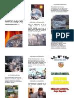 tripticocontaminacinambiental-101012143556-phpapp01