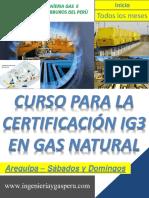 BROCHURE  Gas Natural  IG3 .pdf
