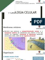 Aula 7_Fisiologia Celular