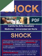camilashockpresentacion-120204213224-phpapp02.pptx