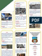 DESASTRES NATURALES TRIPTICO.....