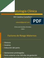 Neonatologia Clinica Veterinaria