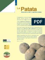 Manual de Cultivo de Patata Ecologica