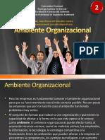 02 Ambiente Organizacional