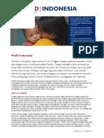 091013_Indonesia_CLEARED (Indonesian).pdf