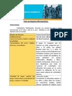 Ficha de Registro Micropráctica_1