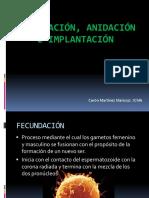 Fecundación, Nidación e Implantación