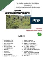 Proyecto de Sociologia y Desarrollo Sustentable 2013