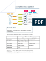 Tema 8- Sistema Nervioso Central